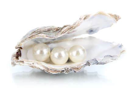 pearl shell: Open oyster with pearls isolated on white