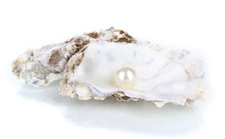 convoluted: Open oyster with pearl isolated on white