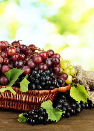 assortment of ripe sweet grapes in basket, on green background photo