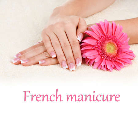 Woman hands with french manicure and flower on towel photo