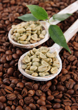 Green and brown coffee beans with leaves photo