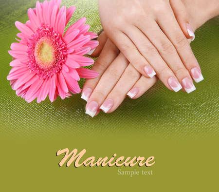 Frau Hände mit Französisch Maniküre und Blume auf grünem Hintergrund