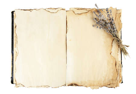 lavander: Open old book and lavander isolated on white Stock Photo