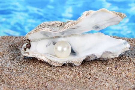 Open oyster with pearl on sand on water background photo