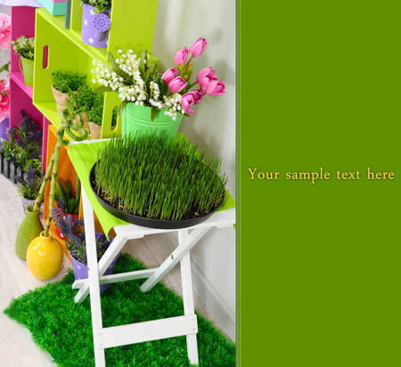 Colorful shelves and table with decorative elements and flowers Stock Photo - 19883292