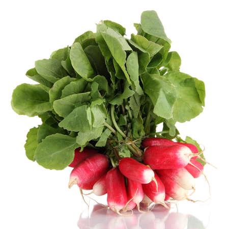 radish: Small garden radish with leaves isolated on white