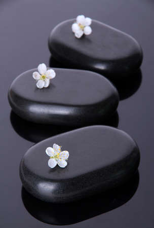 Hot spa stones on dark background photo