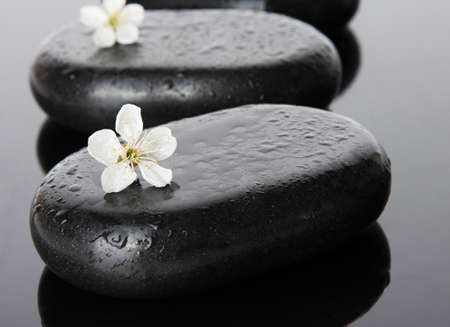 Spa stones and white flowers on dark background photo