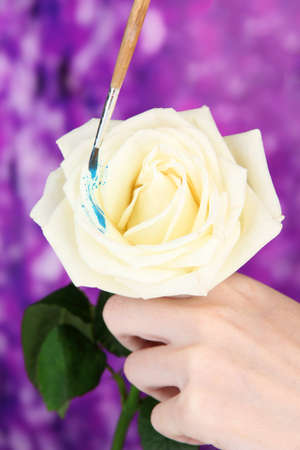 Female hands holding white flower and paint it with colors, on bright background photo