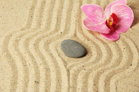 Zen garden with raked sand and round stone close up Stock Photo - 20012664