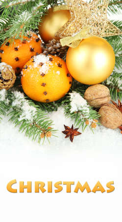 Christmas composition with oranges and fir tree photo