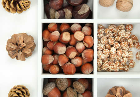 Assortment of nuts,chestnut, pinecone and acorn in white wooden box photo