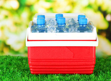 Kühlschrank Organizer Flaschen : Picnic kühlschrank mit flaschen wasser und eiswürfeln auf gras