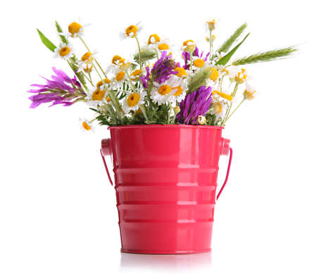 Beautiful wild flowers in  pail, isolated on white photo