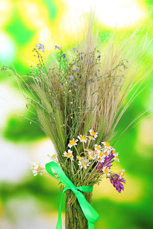Bouquet of wild flowers and herbs, on bright background photo