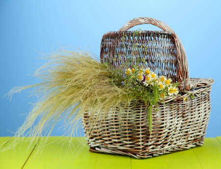 Bouquet of wild flowers and herbs, in wicker basket, on color background photo