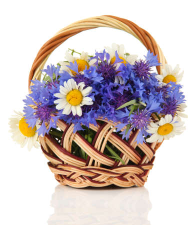Beautiful bouquet of cornflowers and chamomiles in basket, isolated on white photo