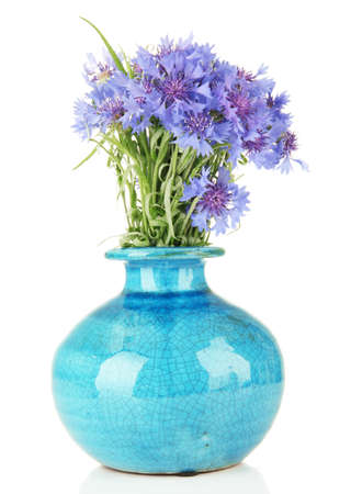 Beautiful bouquet of cornflowers in vase, isolated on white photo