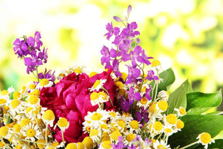 Bouquet of wild flowers, on bright background photo