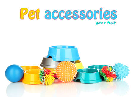 Pet accessories isolated on white photo