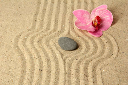 Zen garden with raked sand and round stone close up Stock Photo - 20257950