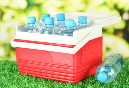 Picnic refrigerator with bottles of water and ice cubes on grass photo