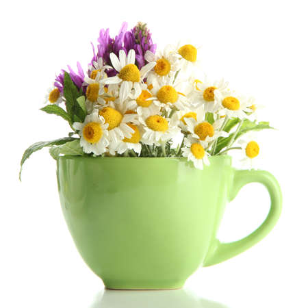 wild mint: Beautiful wild flowers and mint in cup, isolated on white