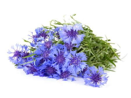 Beautiful bouquet of cornflowers ,isolated on white photo
