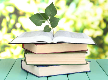 Books with plant on table on bright background photo