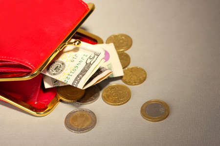 economise: female red wallet with money on grey background