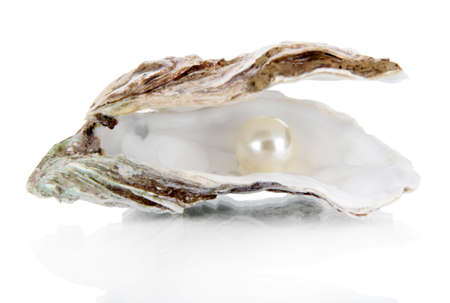 Open oyster with pearl isolated on white photo