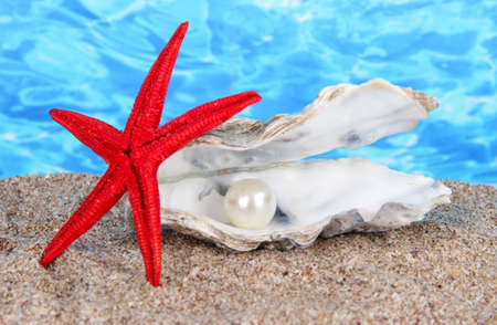 convoluted: Open oyster with pearl on sand on water background