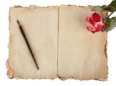 Old paper, ink pen and rose isolated on white photo