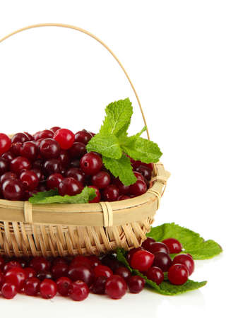 Ripe red cranberries in basket, isolated on white  photo