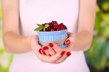Woman hands holding bowl of ripe red cranberries, close up  photo