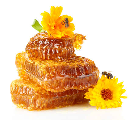 sweet honeycomb with honey, bee and flowers, isolated on white Imagens