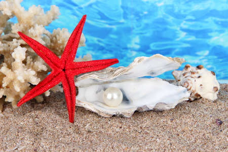 corall: Open oyster with pearl on sand on water background