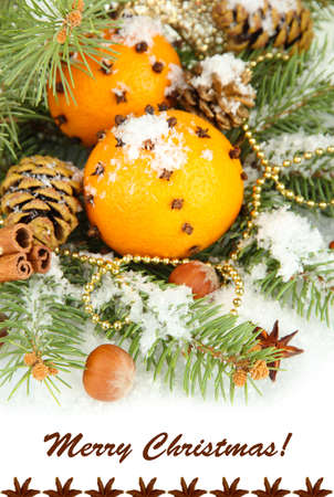 Christmas composition with oranges and fir tree close-up photo