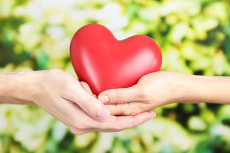 Heart in hands on nature background photo