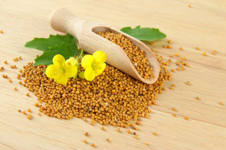 mustard seed: Mustard seeds with mustard flower on wooden background Stock Photo