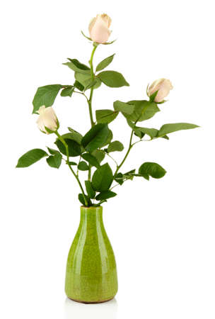Beautiful roses in vase, isolated on white photo