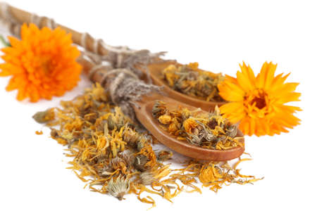Fresh and dried calendula flowers in wooden spoons isolated on white Stock Photo