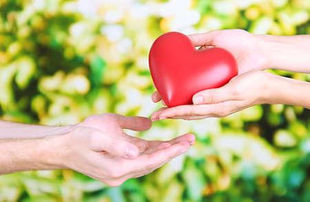 beloved: Heart in hands on nature background