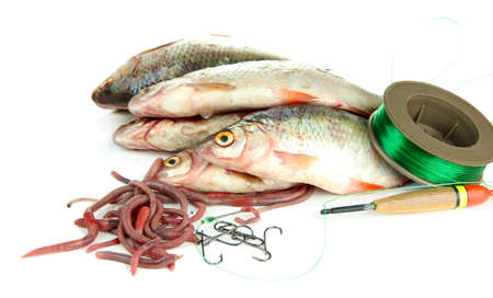 Fishes and fishing tools isolated on white photo