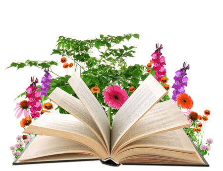 Open book with  flowers isolated on white photo