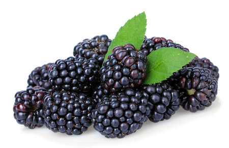 Sweet blackberries isolate on white Imagens
