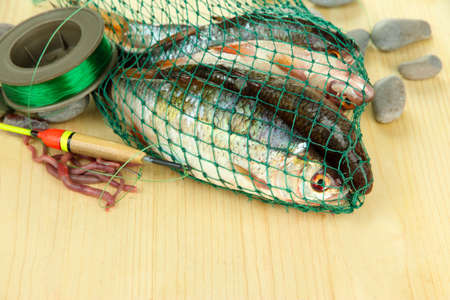 Fishes in fishing net on wooden background photo