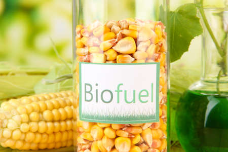 biodiesel plant: Conceptual image of bio fuel.  On bright background Stock Photo
