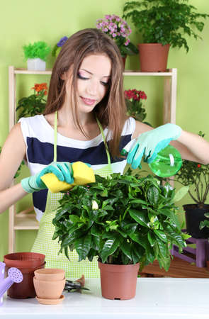 Beautiful girl florist with flowers in room Stock Photo - 21598531