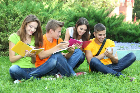 Happy group of young students sitting on  meadow photo